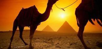 egipto ofertas