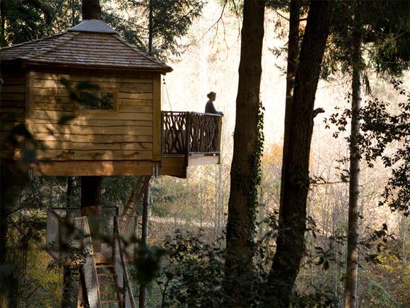 cabaña en los arboles terraza