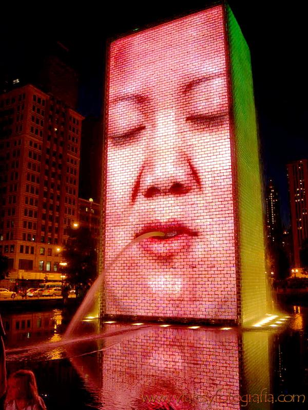 Chicago Millennium Park 10