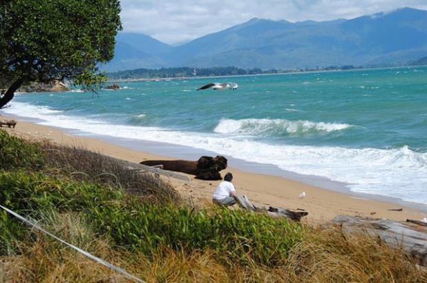 Nueva Zelanda Isla Sur