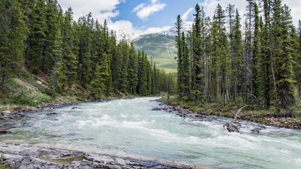 Anthabasca River