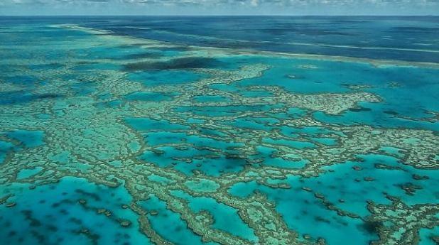 La Gran Barrera de Coral (Australia)