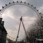 El London Eye desde Jubilee Gardens
