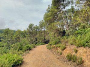 Coves Can Riera, Torrelles de Llobregat
