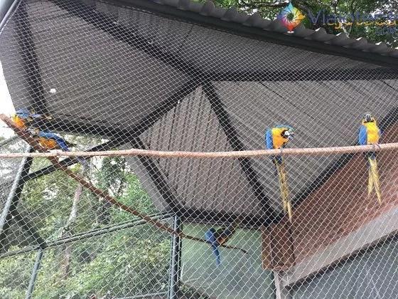 1 Cidade 1 Atração Joinville Zoobotânico animais2