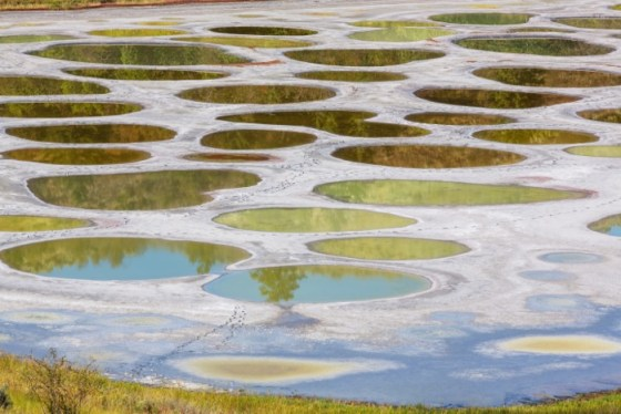 Spotted Lake no Canadá