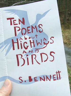 Ten Poems About Highways and Birds by Sarah Bennett