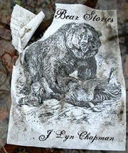 Bear Stories cover