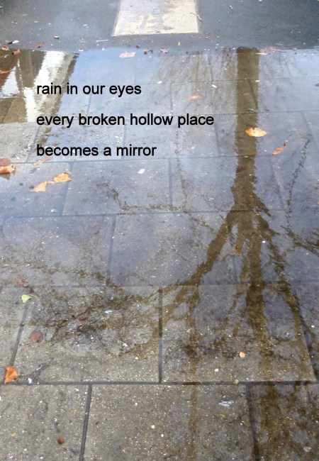"""A bare tree reflected in a puddle with this haiku printed on top: """"rain in our eyes / every broken hollow place / becomes a mirror"""""""