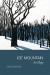 cover of Ice Mountain