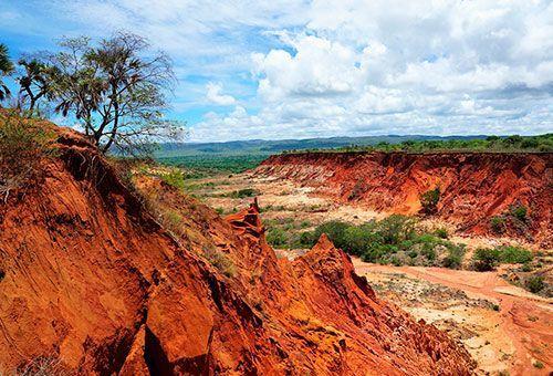 Viaje Descubre Madagascar - Parque Nacional Tsingys