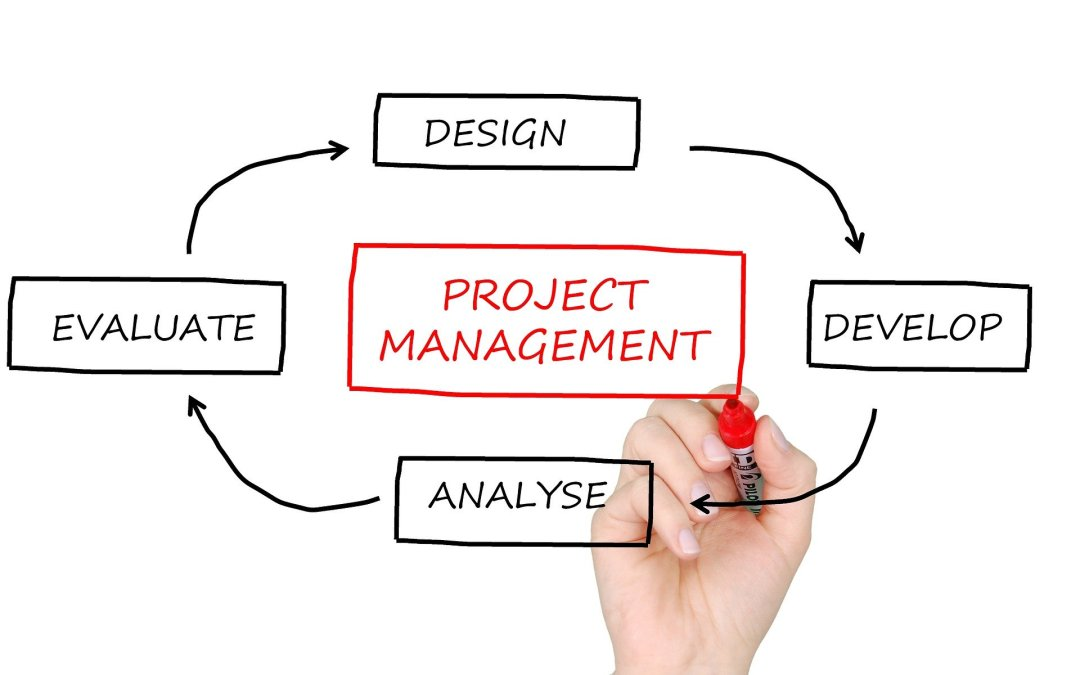 Organization and the Importance of Good Project Management