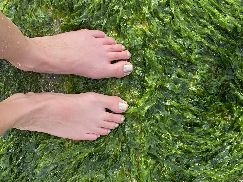 woman's feet on kelp