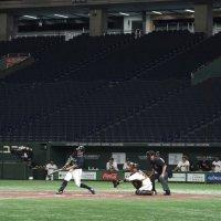 Liga japonesa de beisbol comenzará el 19 de junio
