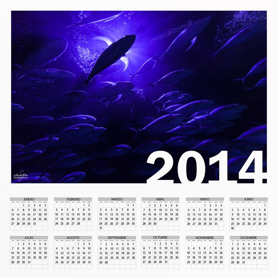 Calendario 2014 Vicente Forés Fotografía web