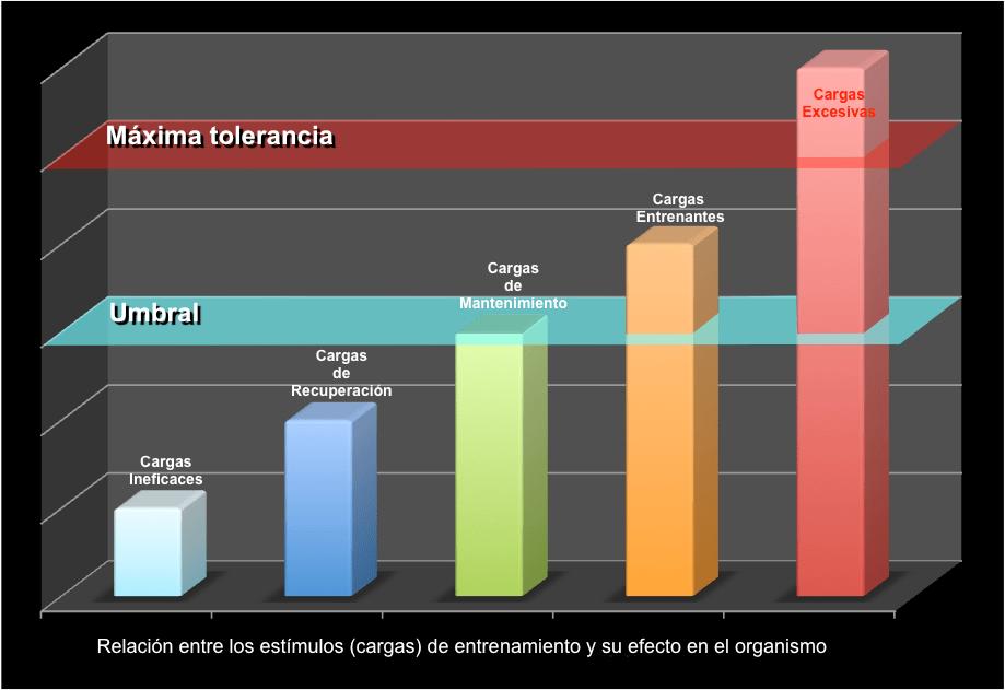 El principio del estímulo eficaz