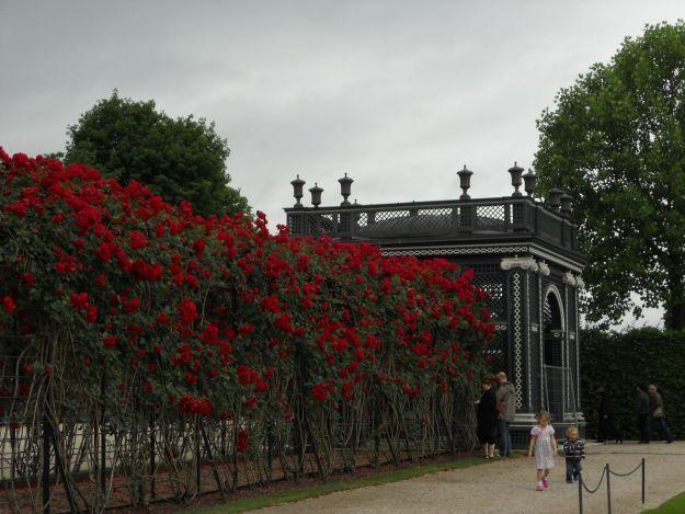 jardim de Schonbrunn