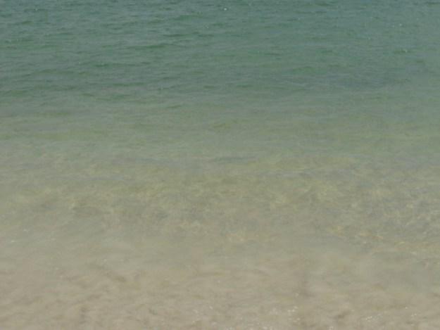 ilha do campeche como ir passeio