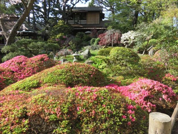 Japanese Tea Graden. Foto: Marcelle Ribeiro
