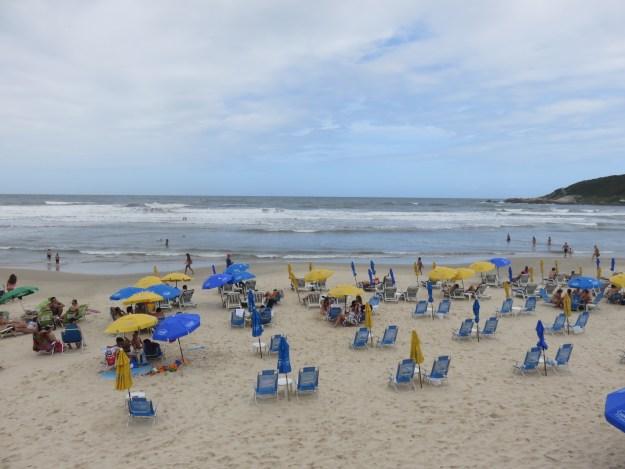 Rosa Sul, na Praia do Rosa. Foto: Marcelle Ribeiro.