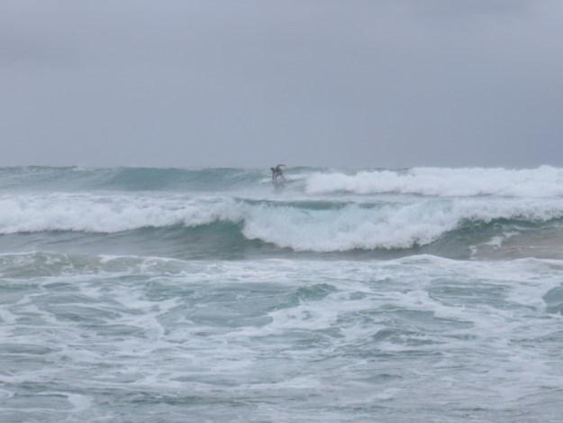 praia da ferrugem surf
