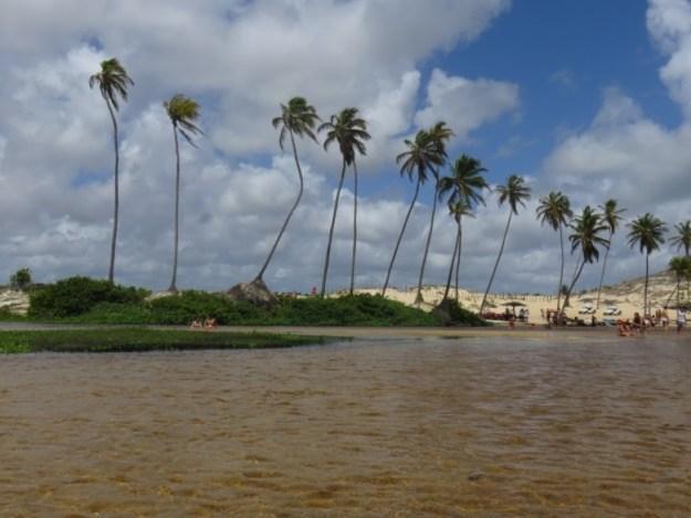 parrachos de maracjau rio panau