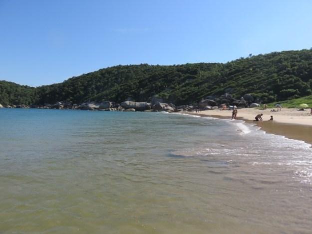 praias de bombinhas tainha
