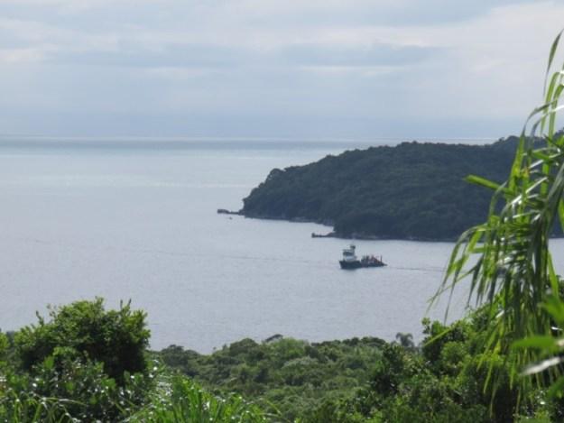 ilha de porto belo trilha ecologica