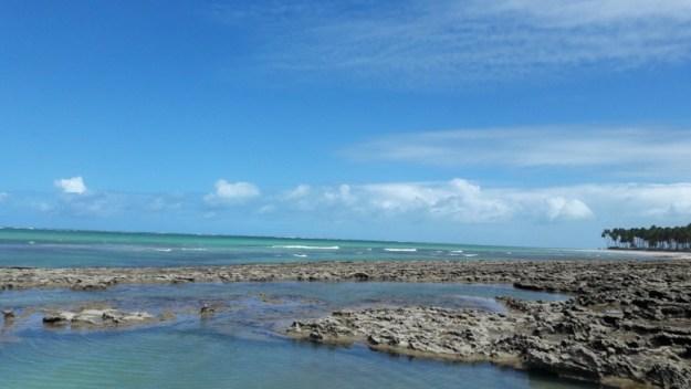 piscinas naturais o que fazer na praia dos carneiros