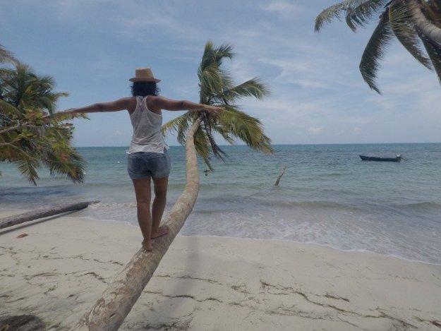 praia de mazanillo ilha de porovidencia coqueiro