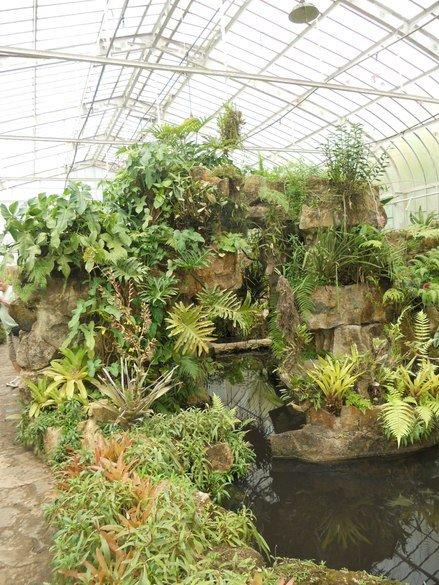 o que fazer em sp jardim botânico estufa