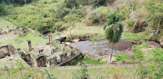 processamento de arroz fazenda cachoeira grande