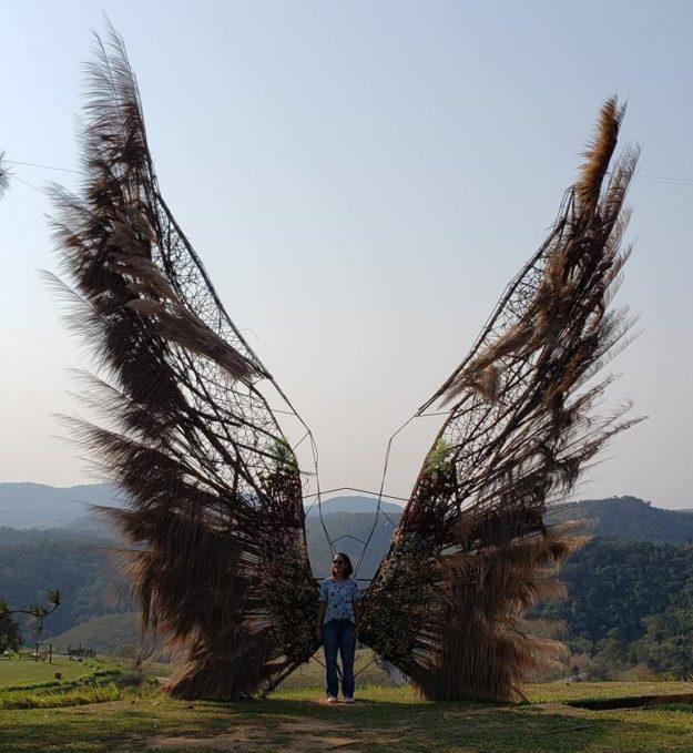 jardim ecologico uana ete asas