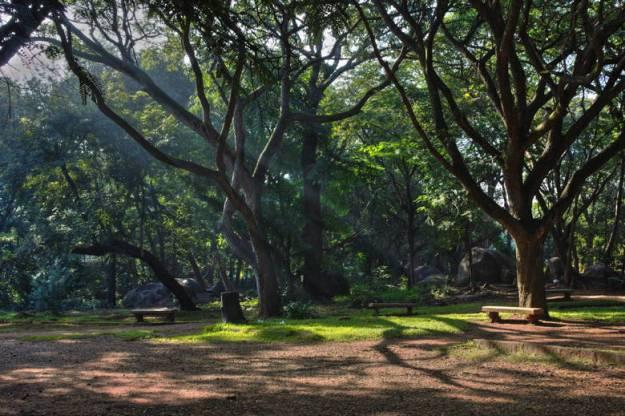 cubbon park o que fazer em bangalore