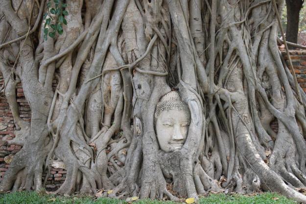 roteiro bangkok ayutthaya