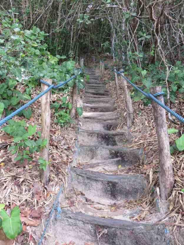 o que fazer em pipa escada santuario praia do madeiro