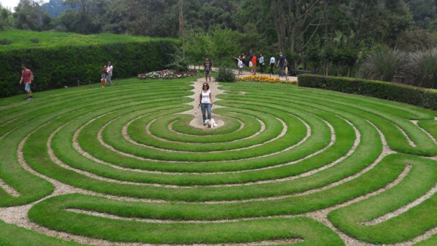 labirinto planta amantikir campos do jordao