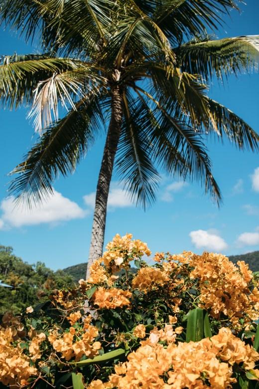Palm Bay Island