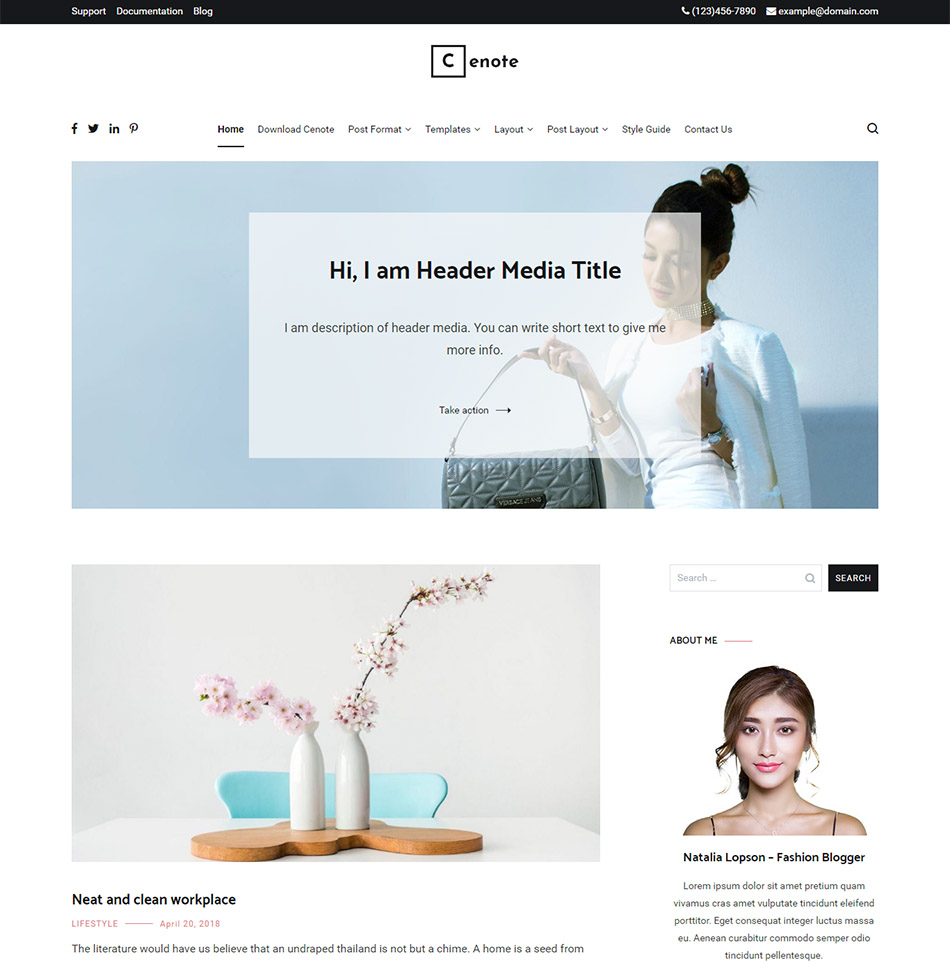 Wordpress Themes - VickyMad