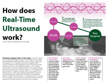 VICSD Real-Time Ultrasound