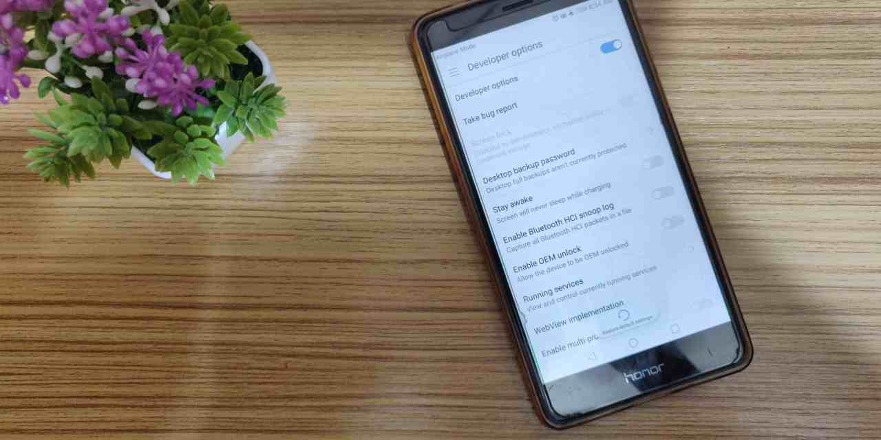 Know How to use Developer Options in Android Device