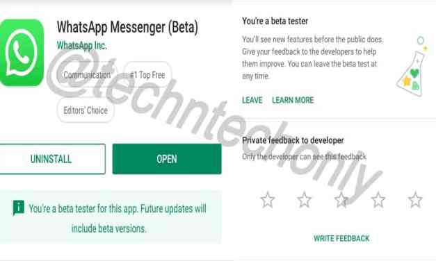 Android app beta version: What is meant by Beta Application?
