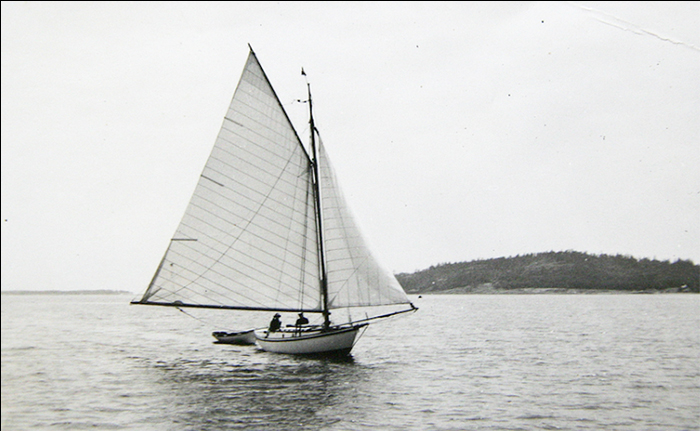 The elegant little Dorothy sailing wing on wing