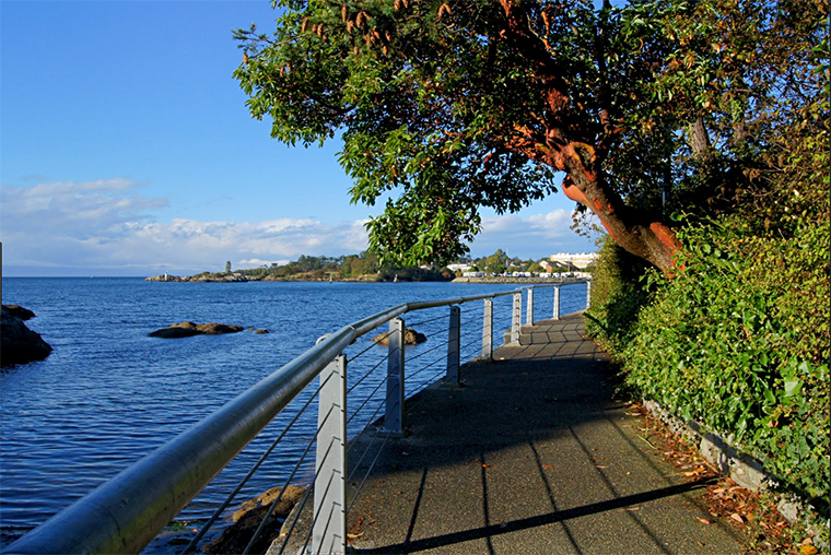 One of the diverse views from the Westsong Walkway. Photo courtesy of Victoria Daily Photo