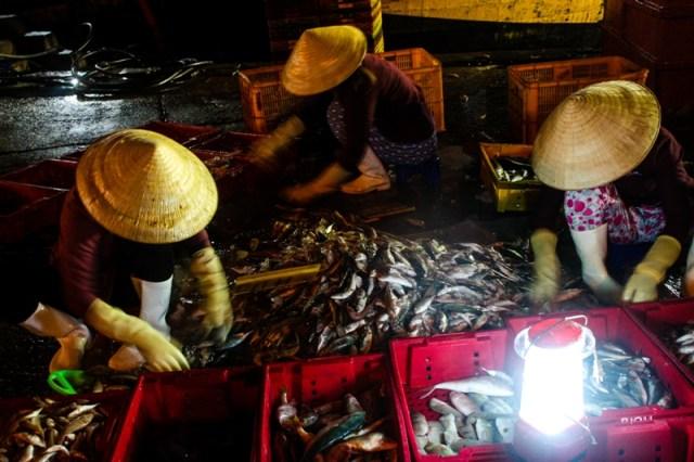 Victoria Phan Thiet - Phan Thiet Fish Market - James Pham-3