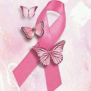 19 de octubre: Día Internacional contra el Cáncer de Mama.