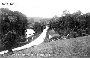 Blandford, White Cliff Mill Hill c1915