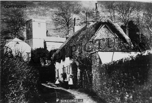 Bincombe, Village and Church c1890