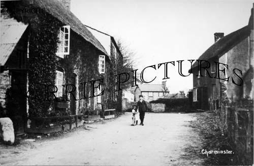 Charminster, Village c1900