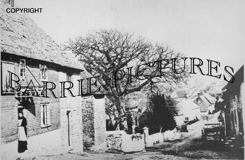 Chideock, Village c1890